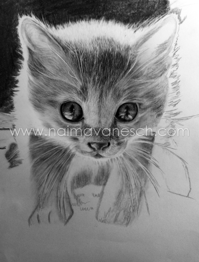 Pencil drawing. 2012